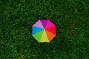 pink yellow and blue umbrella on green grass