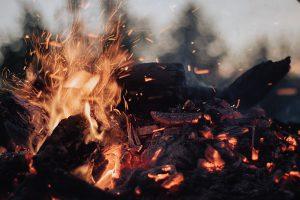 tilt-shift lens photography of fire ember